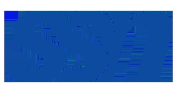 Logo of SSN